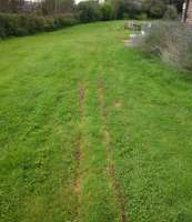 Relaid grass after trenching
